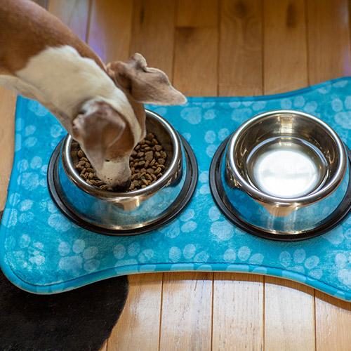 Pet Feeding Mat print on demand 3 bone