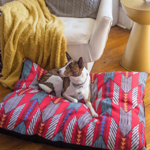 5 Pet Products to Add to Your Store